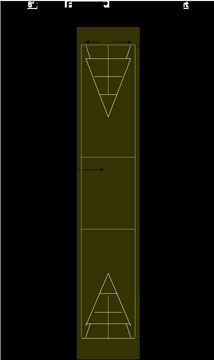 8′ X 56′ Shuffleboard Court